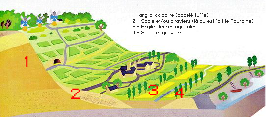 Bourgueil 2