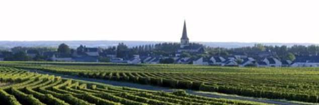 SN de Bourgueil