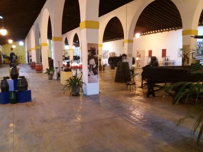 Jerez bodega museo fundador .jpg