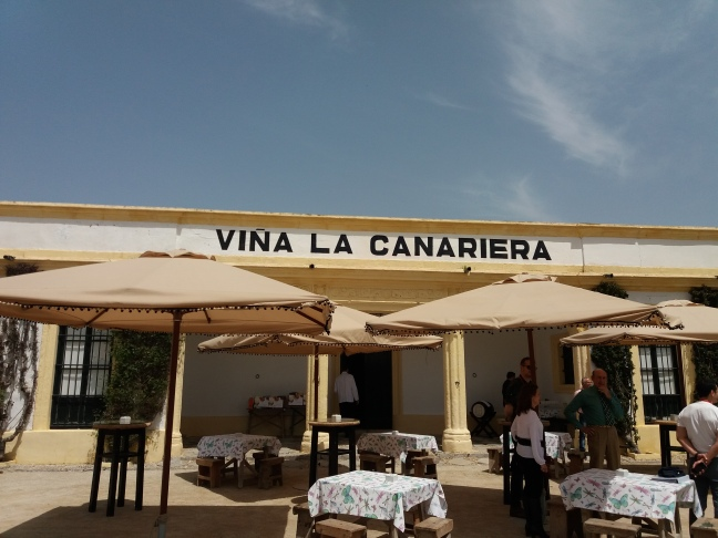 Jerez canariera Carrascal .jpg