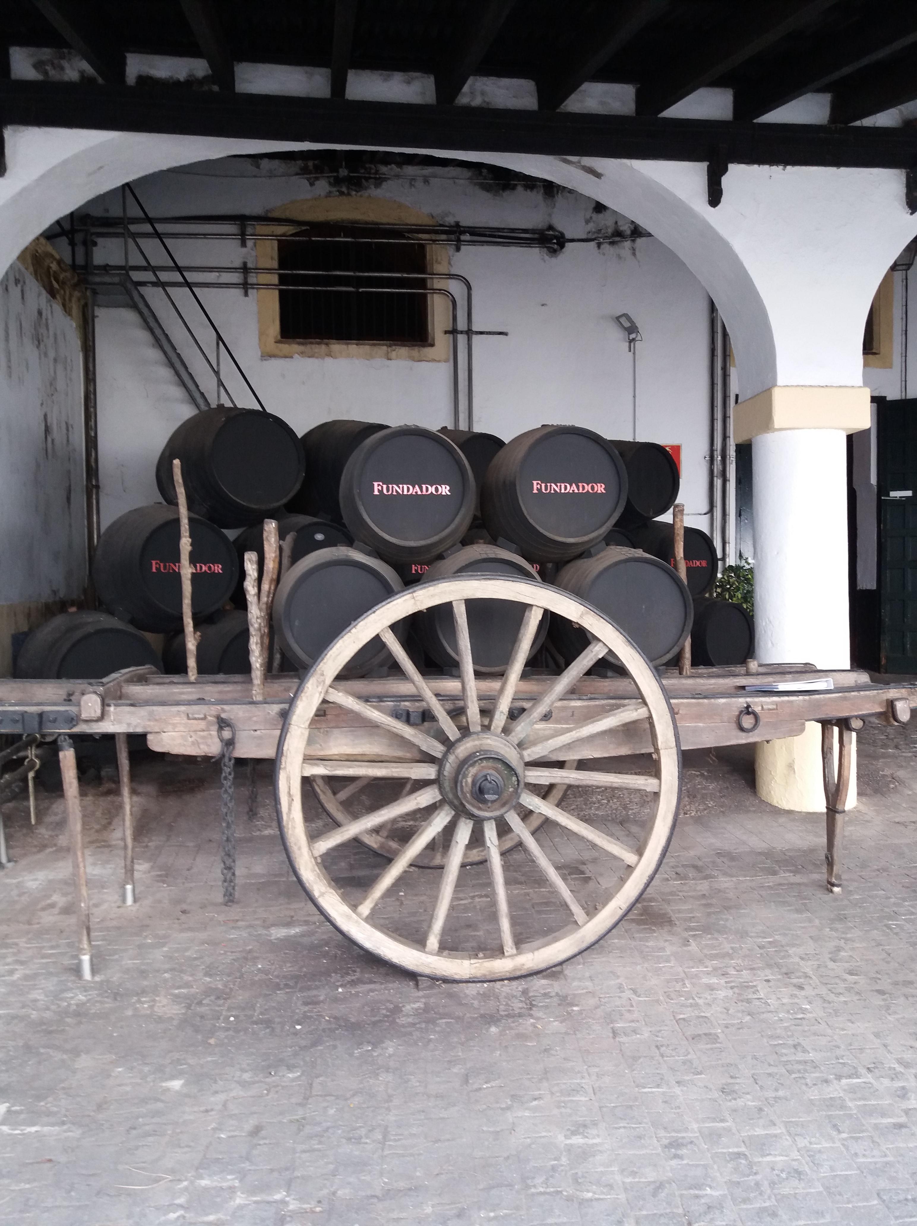 Jerez fundador.jpg